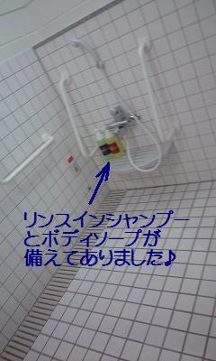 10091807.jpg