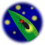 firefly01-002.jpg