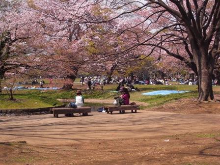 Enyukai_20100411_1.jpg