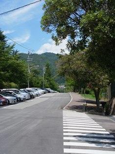 RoadToAcoHamo_4.jpg