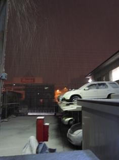 Snow_20100201.jpg