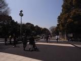 Yoyoko_20100411.jpg