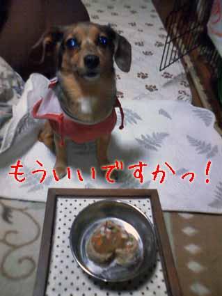 wankogohan3-5.jpg
