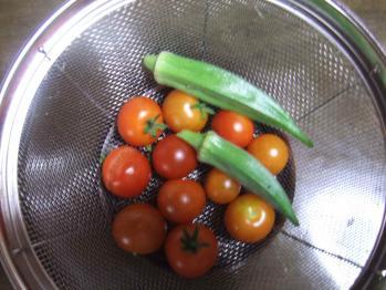 トマト、おくら