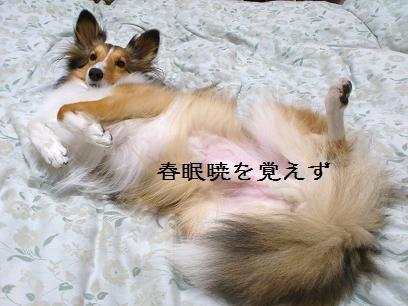 寝坊すんなヨ