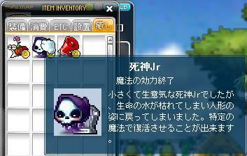 Maple110404_154620.jpg