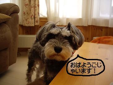 obihiro4