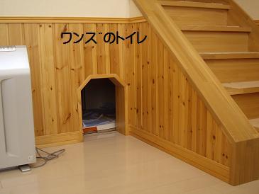 obihiro5