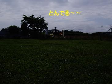 IMGP7669