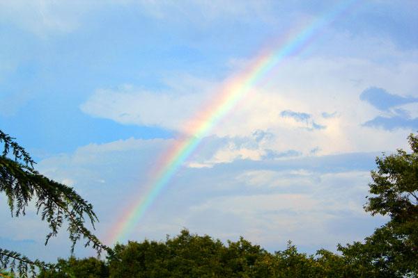 那須高原でみた虹