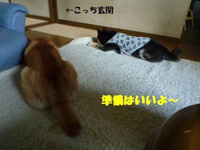 05_20090922082812.jpg