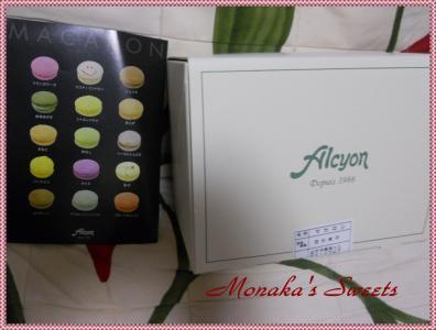 alcyon1.jpg