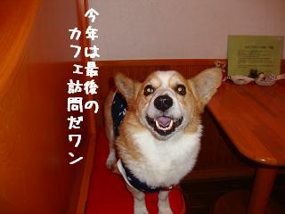 12.19ワンダフル 紋兄