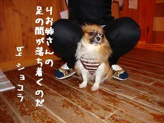12.19ワンダフル りおさんとショコラ