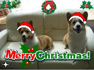 クリスマス2009