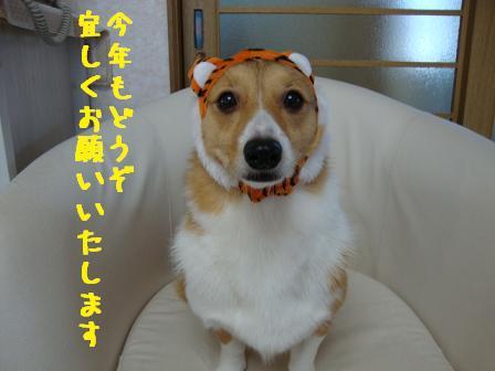 2010ブログ挨拶(杏)