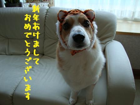 2010ブログ挨拶(紋)