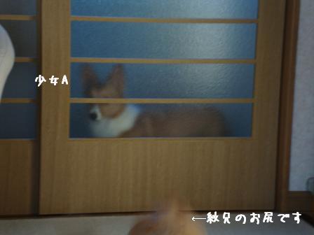 廊下杏(少女A)