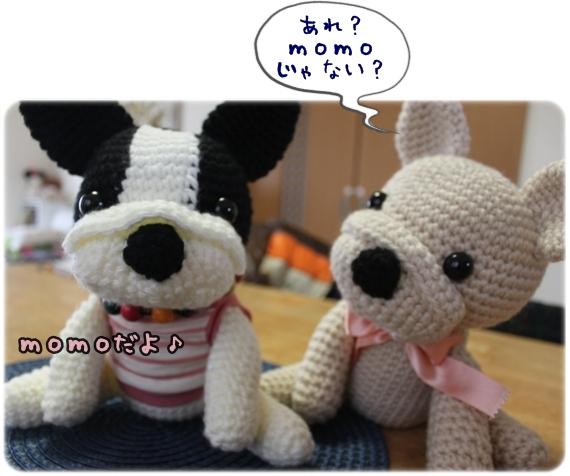 IMG_6945-1.jpg