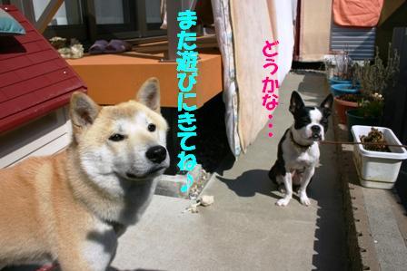 IMG_オヤツ作戦8