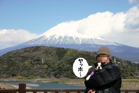 IMG_富士山