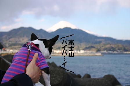 IMG_富士山3