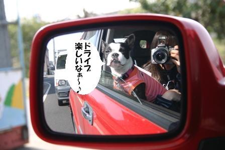 IMG_ドライブ大好き