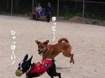 もみじちゃん2