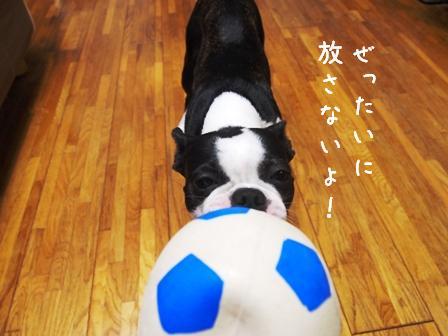 サッカーボール青3