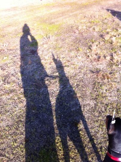 あずきと私の影