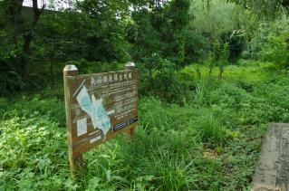 そこから北へ行くと矢川緑地