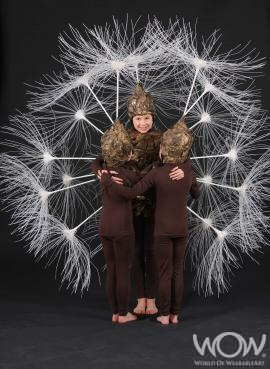 The Dandelion Clock, Tracey Koole, Auckland_0.preview