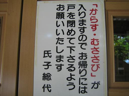 コピー ~ IMG_1353