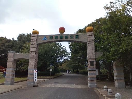花畑園芸公園・門