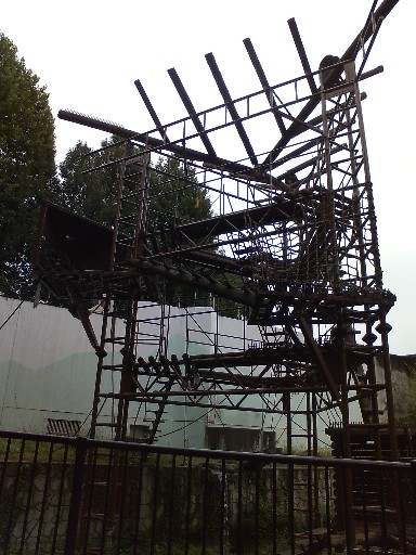 福岡市動物園・チンパンジー