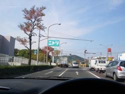 IMGP1131.jpg