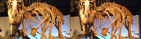 ゴルゴサウルス(交差法)