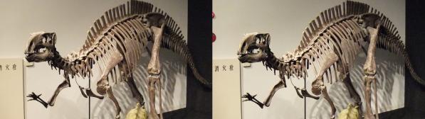 フクイサウルス(平行法)