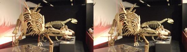 トゥジャンゴサウルス(平行法)