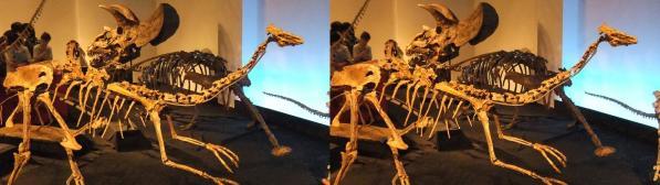 恐竜骨格①(交差法)