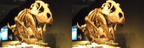 ティラノサウルス(交差法)