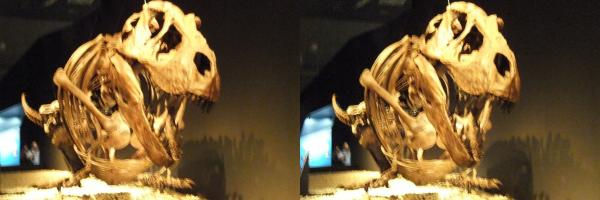 ティラノサウルス(平行法)