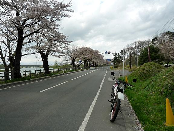 20110504_4.jpg