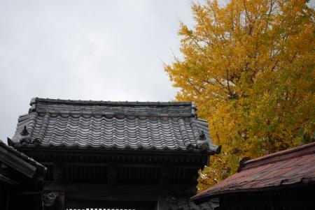 1769福高禅寺
