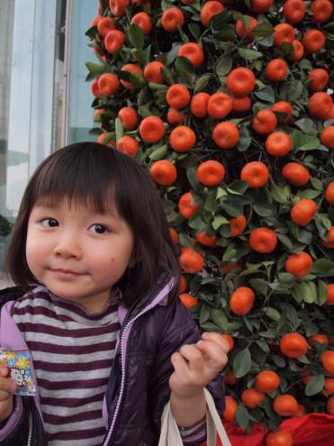 中国版門松