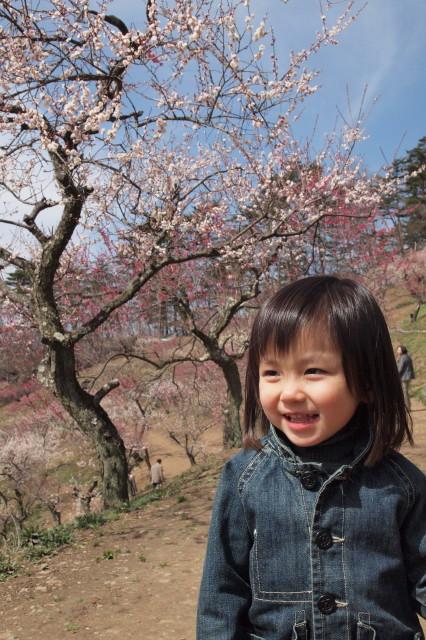 梅を見に行きました
