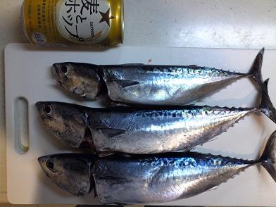 Sizuura_201109_004.jpg