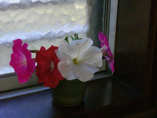 部屋に花を3