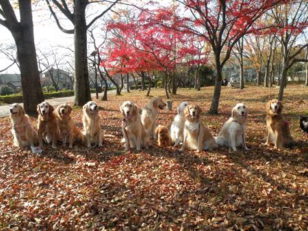 小幡緑地公園