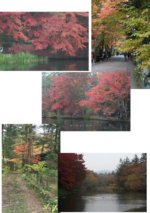 2009-10-23-4.jpg